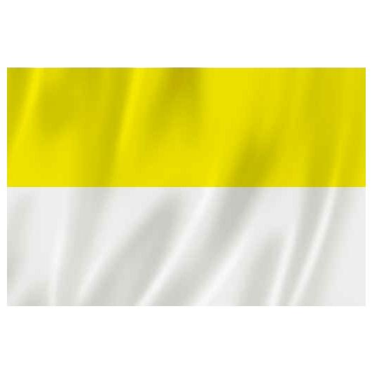 Znalezione obrazy dla zapytania flaga papieska